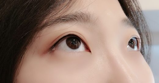 台中紋眼線, 繡眼線